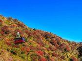 【雲仙の紅葉】10月下旬~11月中旬が見頃。雲仙ロープウェイでは標高1300m、360°のパノラマを楽しめます。